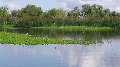 Paul de Arzila - Natural Reserve