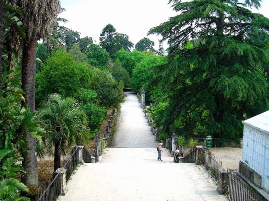 Visite o Jardim Botanico de Coimbra