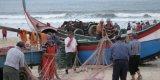 30 Anos de Bandeira Azul na Praia de Mira